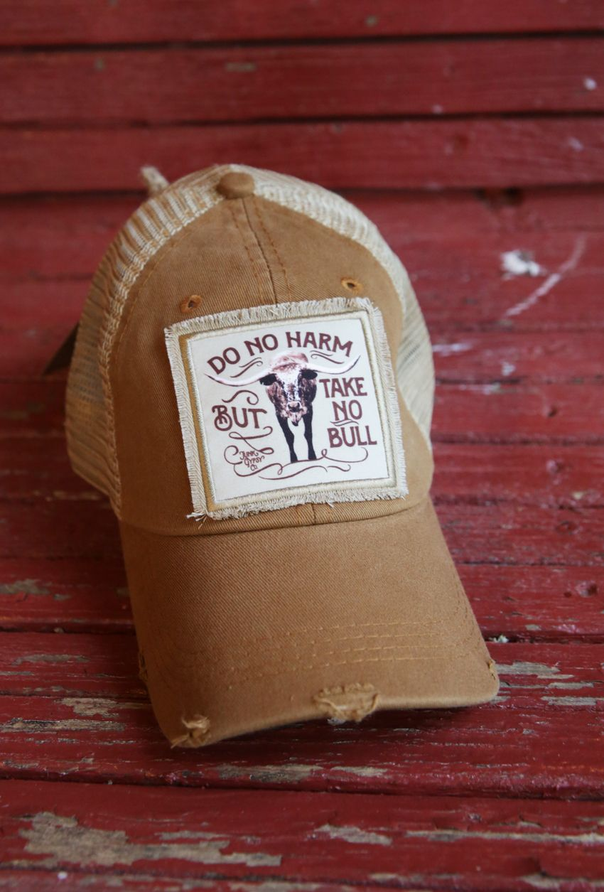 do no harm, but take no bull trucker cap