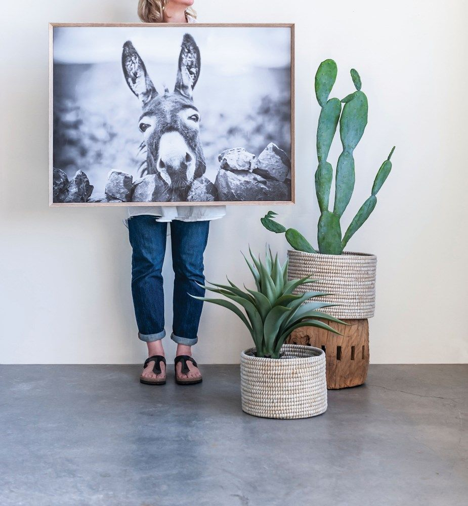 framed donkey wall decor