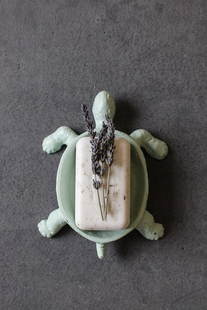 cast iron turtle soap dish