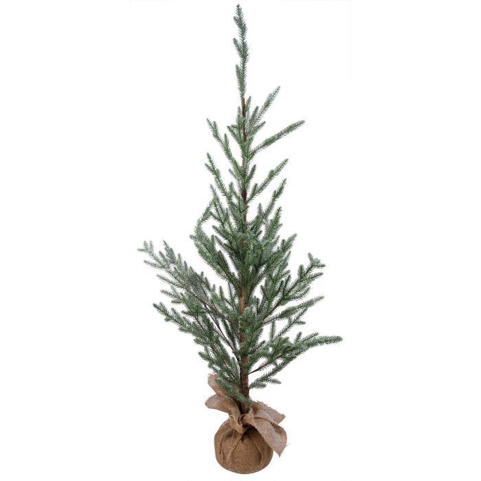 icy evergreen tree