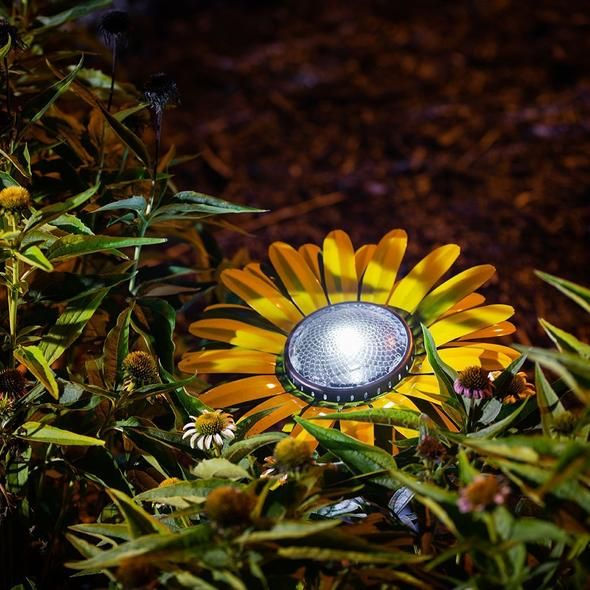 Desert Steel Butter Yellow Daisy Solar Light