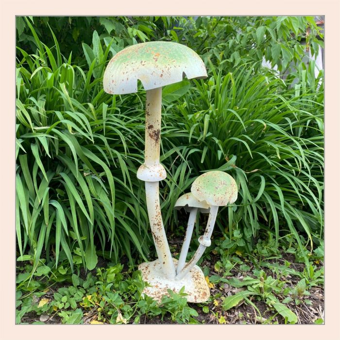 green Mushroom cluster