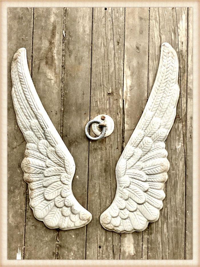 tin wing set