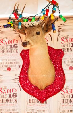 Sadie Robertson's Sweet 16 REDNECK REDCARPET party by the JuNK GypSies
