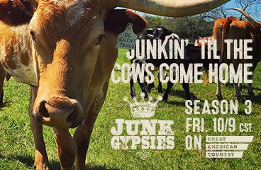 season 3-cows